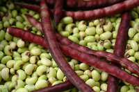 Purple_hull_peas